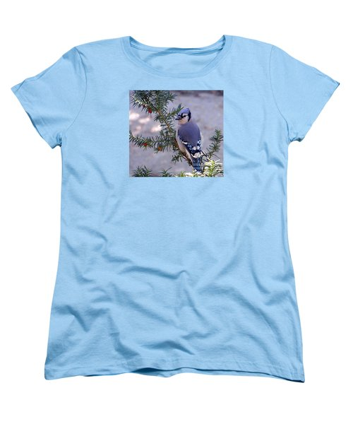Blue Jay - Morning Visitor  Women's T-Shirt (Standard Cut) by Susan  Dimitrakopoulos