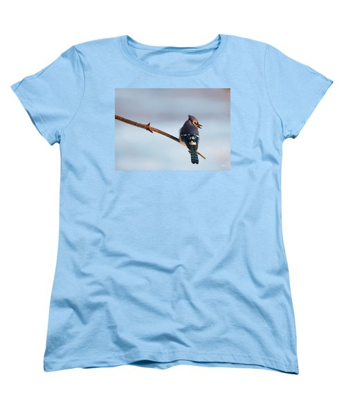Blue Jay With Nuts Women's T-Shirt (Standard Cut) by Everet Regal