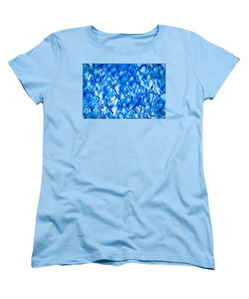 Blue Wispy Women's T-Shirt (Standard Cut) by Don Gradner