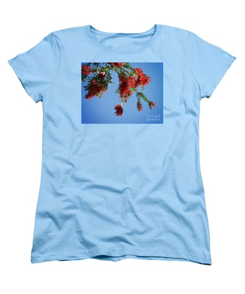 Bottle Brushing The Sky Women's T-Shirt (Standard Cut) by Meghan at FireBonnet Art