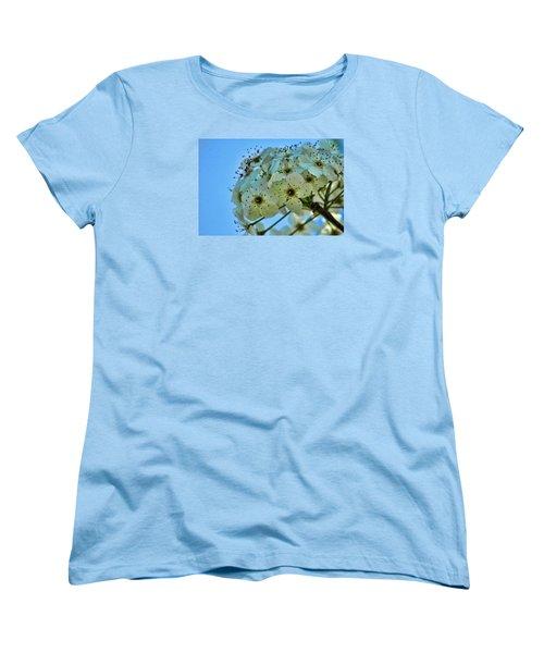 Bradford Pear I Women's T-Shirt (Standard Cut)