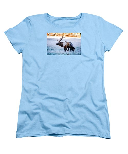 Women's T-Shirt (Standard Cut) featuring the photograph Bull Elk And Cow by Paul Mashburn