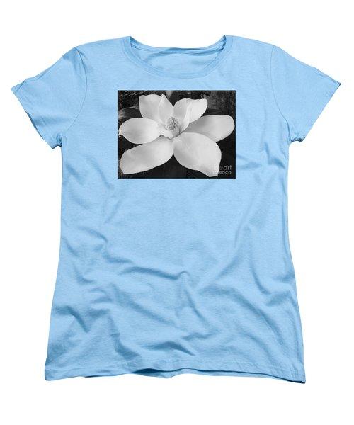 B W Magnolia Blossom Women's T-Shirt (Standard Cut) by D Hackett