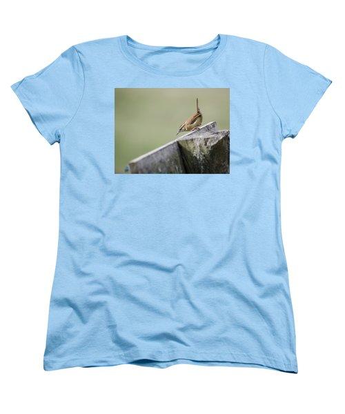 Carolina Wren Two Women's T-Shirt (Standard Cut) by Heather Applegate