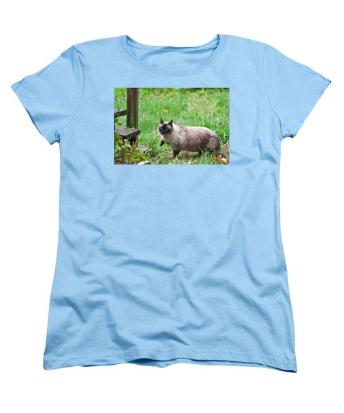 Cat Walking Women's T-Shirt (Standard Cut) by Melinda Fawver