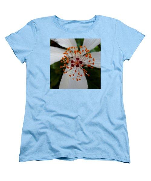 Center Women's T-Shirt (Standard Cut) by Pamela Walton