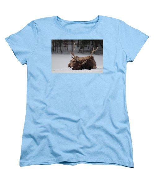Women's T-Shirt (Standard Cut) featuring the photograph Chillin' by Bianca Nadeau