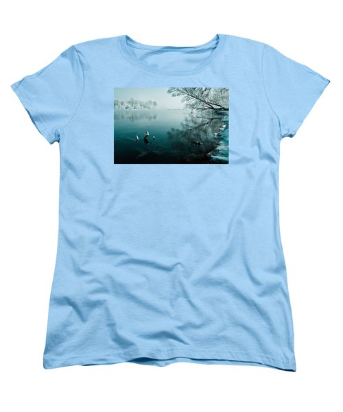 Color Of Ice Women's T-Shirt (Standard Cut) by Davorin Mance