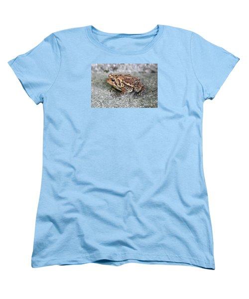 Colorful Toady Women's T-Shirt (Standard Cut)