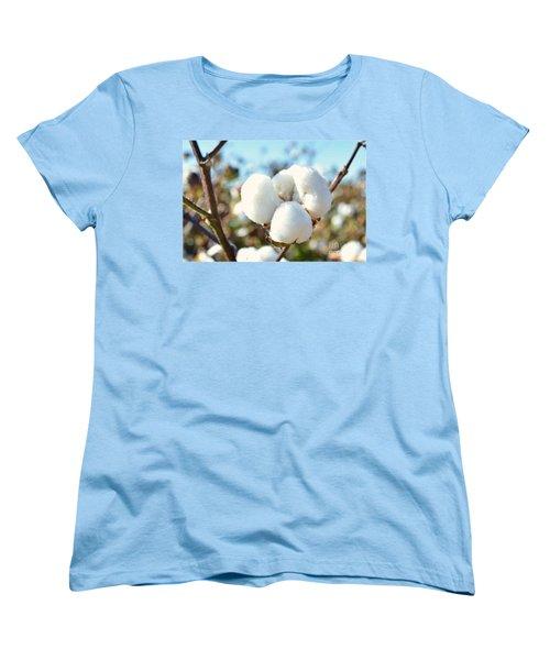Cotton Boll Iv Women's T-Shirt (Standard Cut) by Debbie Portwood