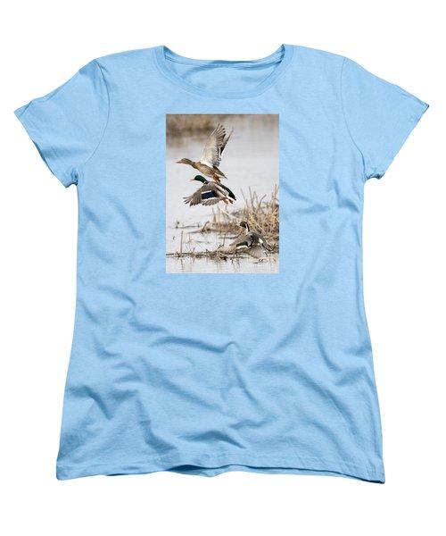 Crowded Flight Pattern Women's T-Shirt (Standard Cut) by Mike Dawson