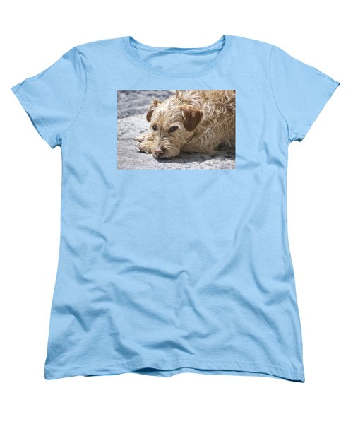 Women's T-Shirt (Standard Cut) featuring the photograph Cruz You Looking At Me by Thomas Woolworth