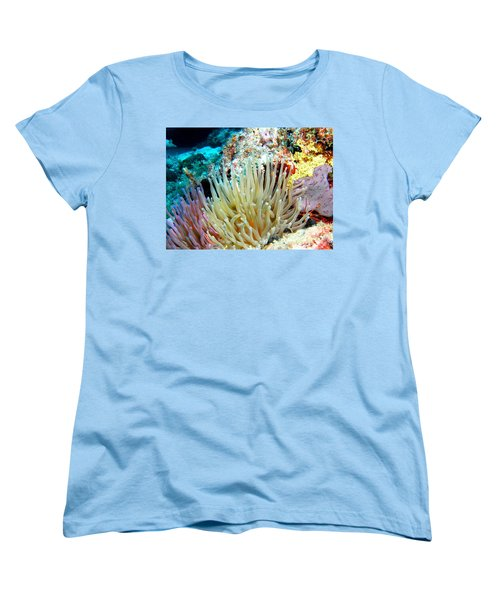 Women's T-Shirt (Standard Cut) featuring the photograph Double Giant Anemone And Arrow Crab by Amy McDaniel