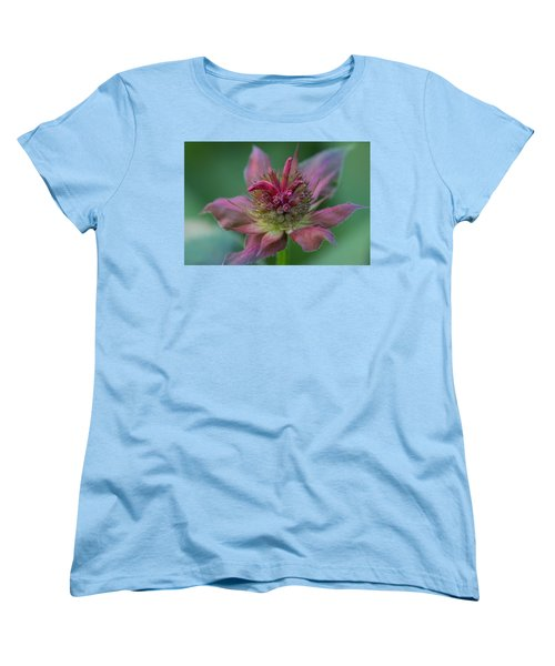 Early Spring Bee Balm Bud Women's T-Shirt (Standard Cut) by Denyse Duhaime