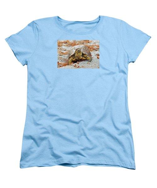 Women's T-Shirt (Standard Cut) featuring the photograph Eastern Box Turtle by Cynthia Guinn