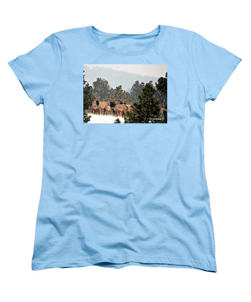 Women's T-Shirt (Standard Cut) featuring the photograph Elk In The Snowing Open by Barbara Chichester