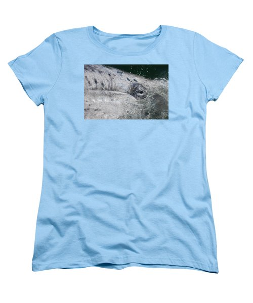 Eye Of A Young Gray Whale Women's T-Shirt (Standard Cut) by Don Schwartz