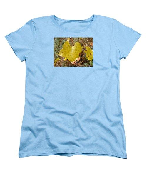 Fall Colors 6302 Women's T-Shirt (Standard Cut) by En-Chuen Soo