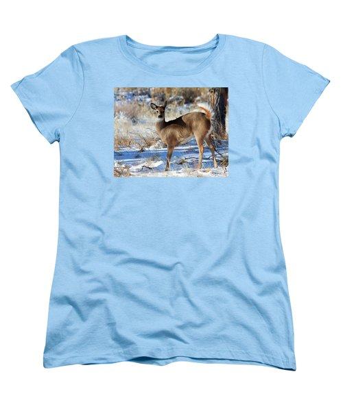 Women's T-Shirt (Standard Cut) featuring the photograph Fancy Pants by Jim Garrison