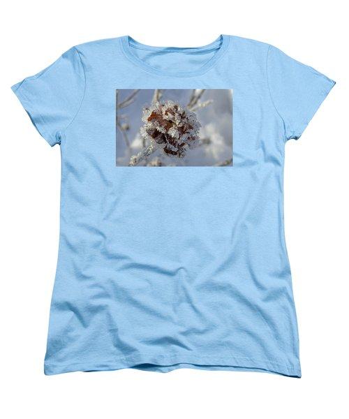 Frosted Willow Rose Women's T-Shirt (Standard Cut)