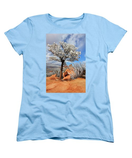 Frosted Wonderland 3 Women's T-Shirt (Standard Cut) by Diane Alexander