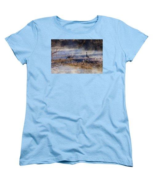 Geese Taking A Break Women's T-Shirt (Standard Cut) by Jennifer White