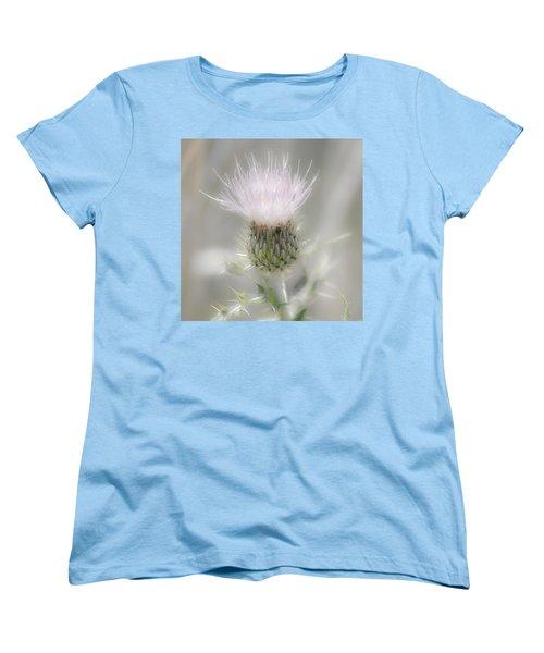 Glimmering Thistle Women's T-Shirt (Standard Cut)