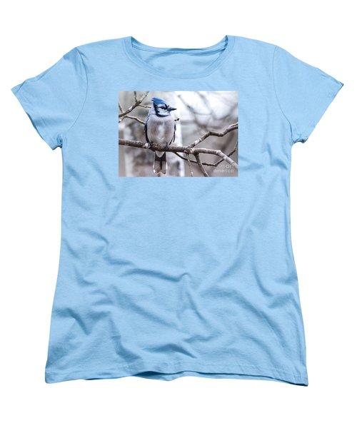 Gorgeous Blue Jay Women's T-Shirt (Standard Cut) by Cheryl Baxter