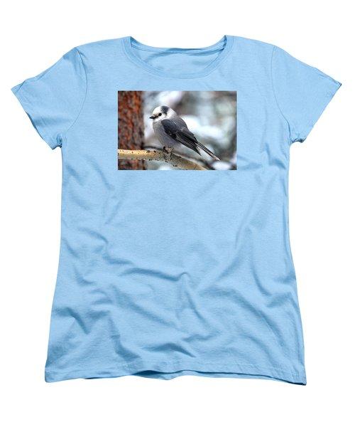 Gray Jay On Aspen Women's T-Shirt (Standard Cut) by Marilyn Burton
