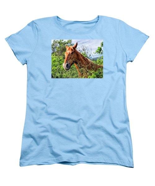 Women's T-Shirt (Standard Cut) featuring the photograph Horse 1 by Dawn Eshelman