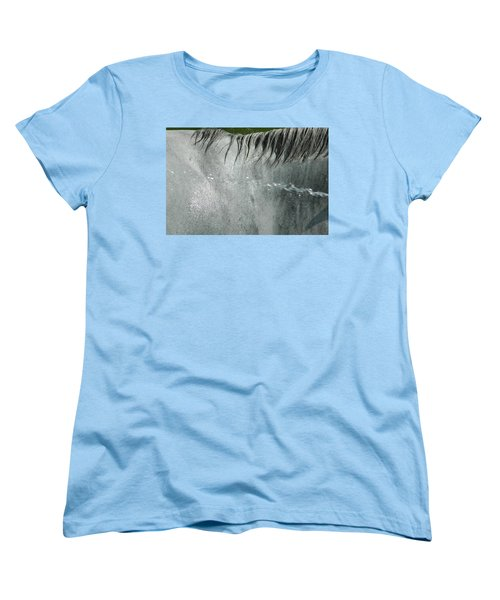Cooling Down White Horse Women's T-Shirt (Standard Cut) by Phil Cardamone