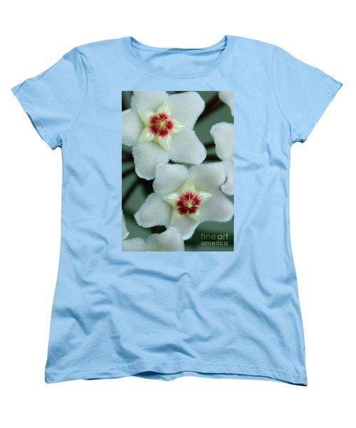 Hoya Women's T-Shirt (Standard Cut) by Debbie Hart