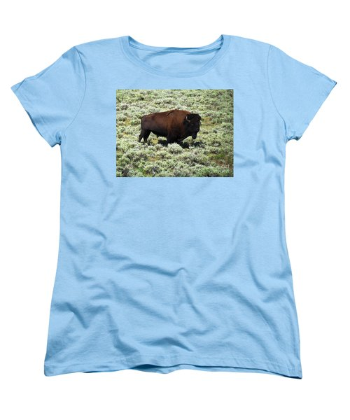 I Am The King Of This Meadow Women's T-Shirt (Standard Cut) by Ausra Huntington nee Paulauskaite