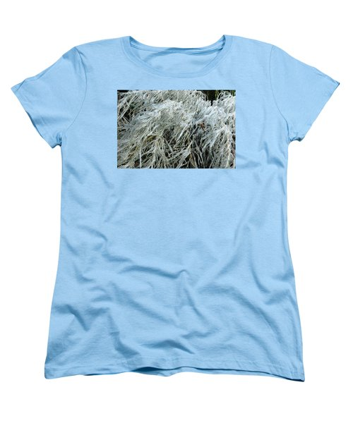 Ice On Bamboo Leaves Women's T-Shirt (Standard Cut) by Daniel Reed