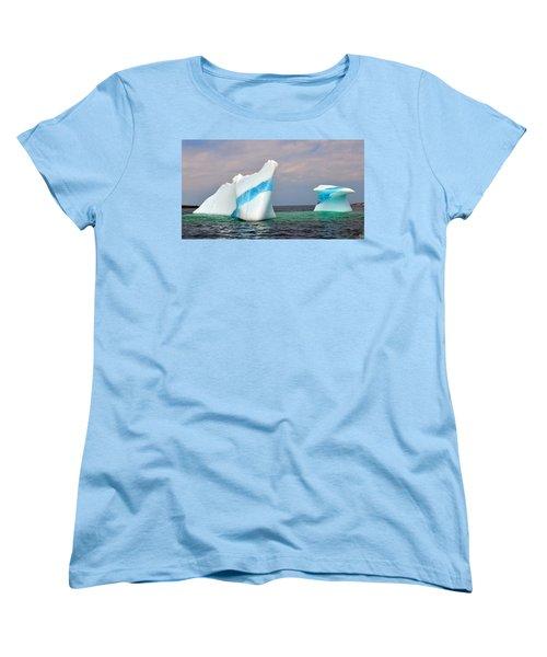 Iceberg Off The Coast Of Newfoundland Women's T-Shirt (Standard Cut) by Lisa Phillips