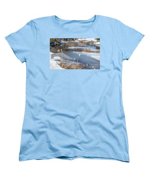 Last Days Of Winter Women's T-Shirt (Standard Cut) by Jola Martysz
