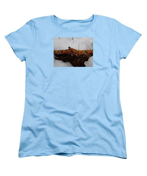 Lichen N'snow Women's T-Shirt (Standard Cut) by Robert Nickologianis