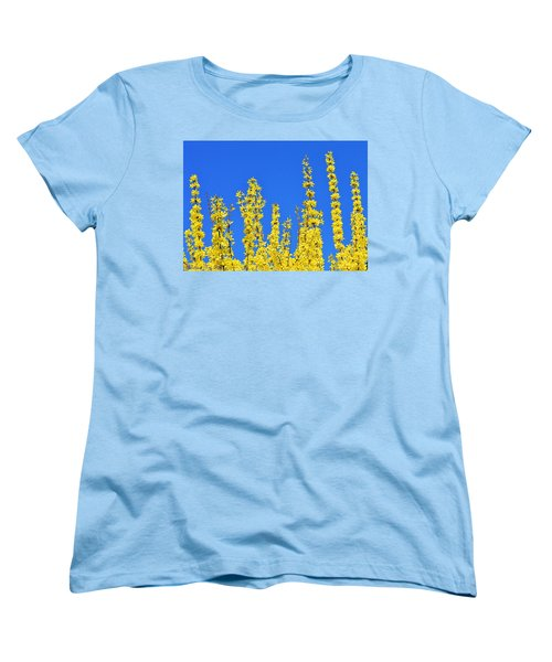 Lighting The Spring Sky Women's T-Shirt (Standard Cut) by Felicia Tica