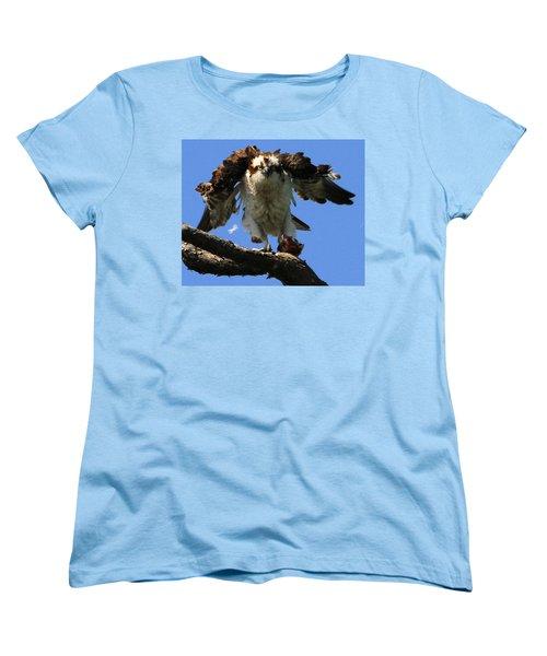 Mad Osprey Women's T-Shirt (Standard Cut) by Roger Becker