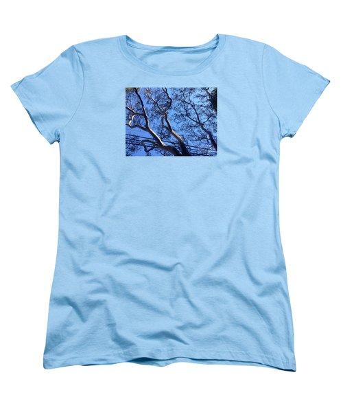 Magnificence Women's T-Shirt (Standard Cut) by Nora Boghossian