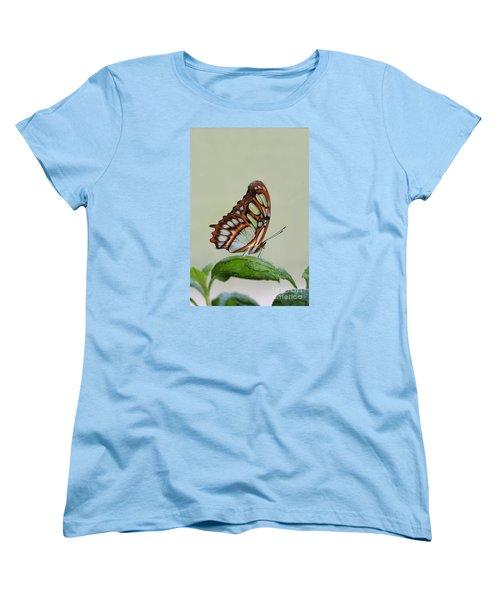 Women's T-Shirt (Standard Cut) featuring the photograph Malachite Butterfly #5 by Judy Whitton