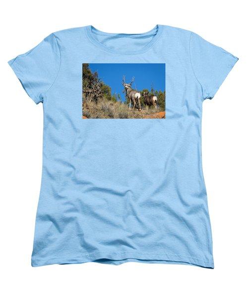 Mule Deer Buck Women's T-Shirt (Standard Cut)
