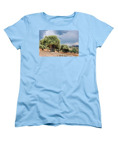 Olive Grove Women's T-Shirt (Standard Cut) by Mike Santis