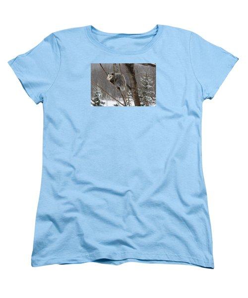 Opossum In A Tree Women's T-Shirt (Standard Cut) by Lucinda VanVleck
