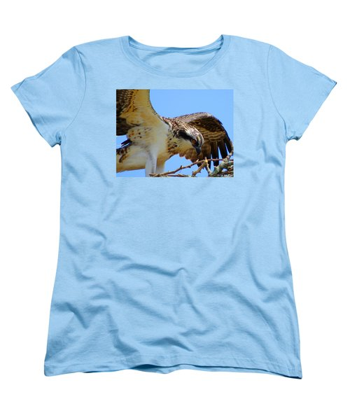 Women's T-Shirt (Standard Cut) featuring the photograph Osprey Youth by Dianne Cowen
