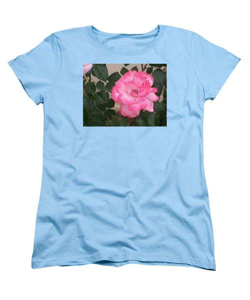 Passion Pink Women's T-Shirt (Standard Cut) by Jewel Hengen