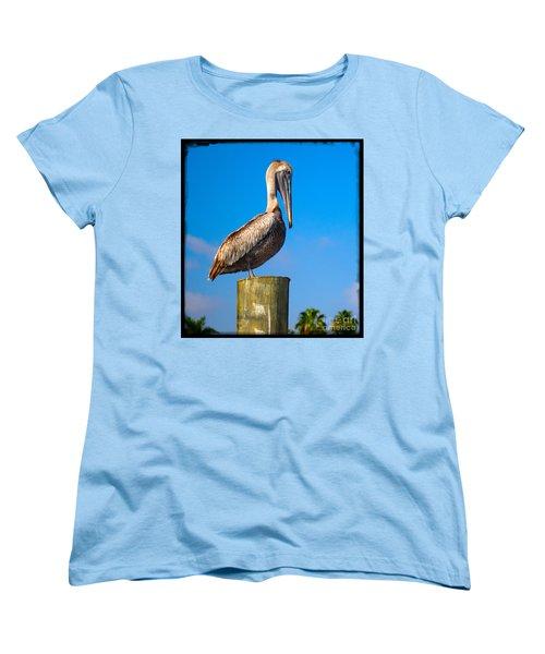 Pelican Women's T-Shirt (Standard Cut) by Carsten Reisinger