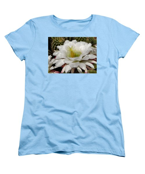 Women's T-Shirt (Standard Cut) featuring the photograph Petals And Thorns by Deb Halloran