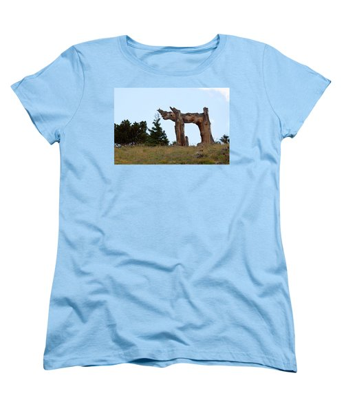 Pi In The Sky Women's T-Shirt (Standard Cut) by Jim Garrison