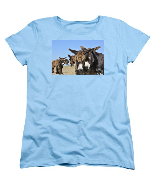 Women's T-Shirt (Standard Cut) featuring the photograph Poitou Donkey 3 by Arterra Picture Library